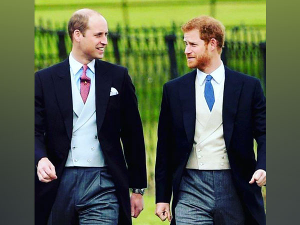 Prince William, Prince Harry won't walk next to each other at Prince Philip's funeral, Palace confirms