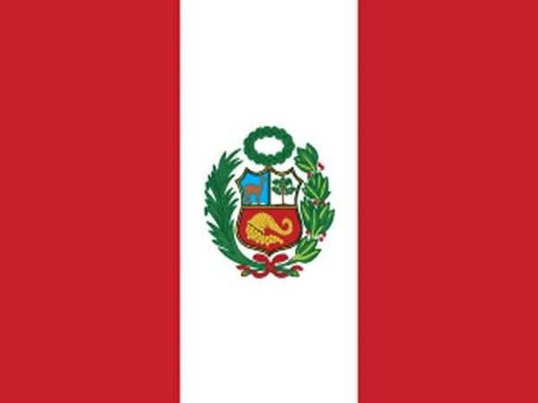 Presidential elections underway in Peru
