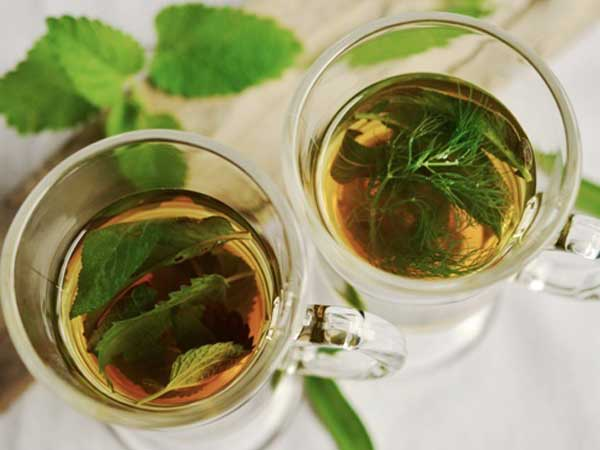 Study suggests green tea may help fight COVID-19