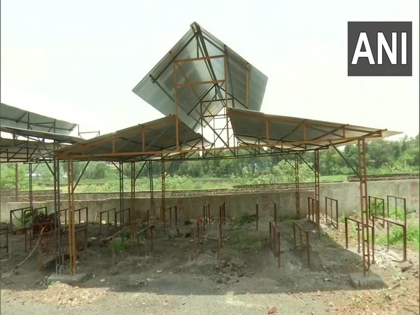 Ashes of Covid victims to give life to plants in Bhopal's Bhadbhada crematorium