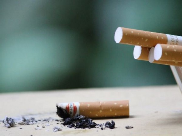 New technique reduces nicotine levels, harmful compounds simultaneously in tobacco