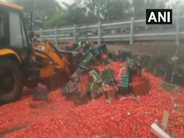 Truck full of tomatoes overturns on Eastern Express Highway in Maharashtra's Thane, 1 injured